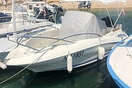 2010' Quicksilver Commander 555